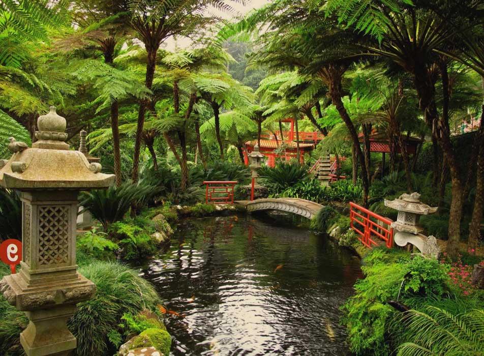 Свидание в ботаническом саду или дендропарке