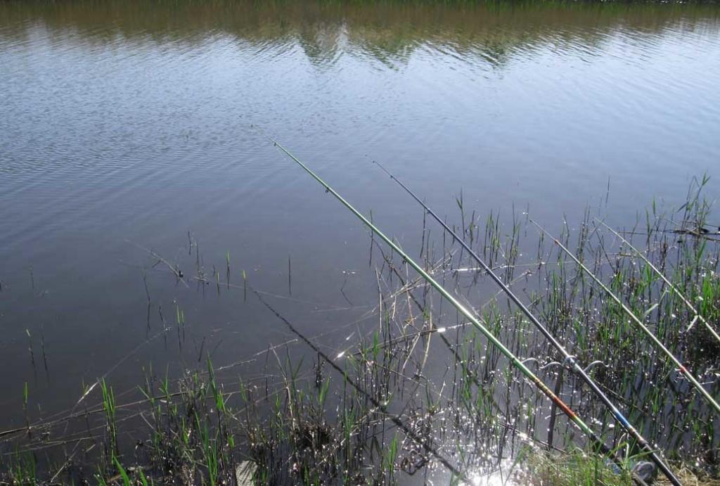 свидание-на-рыбалке