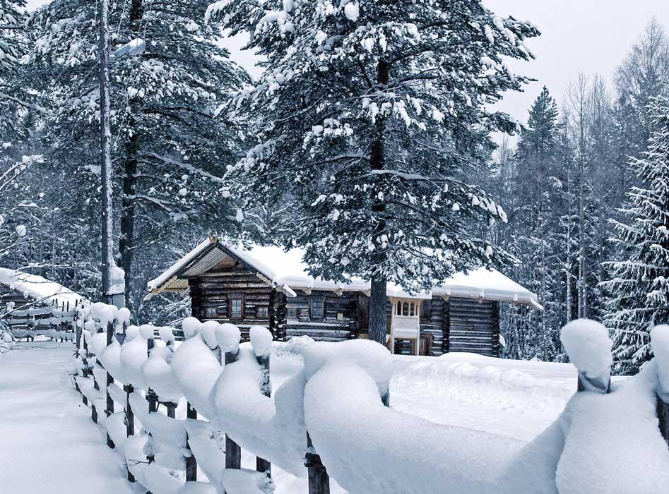 день-рождения-зимой-в-лесу