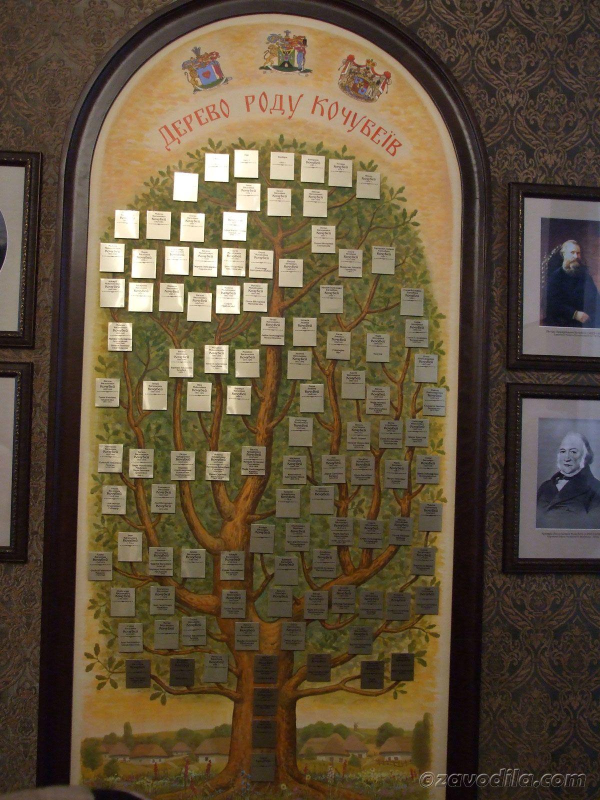 родовое дерево семьи Кочубеев, которые также проживали в этом шикарном помещении.