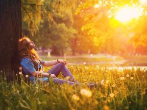 семь правил гармоничной жизни