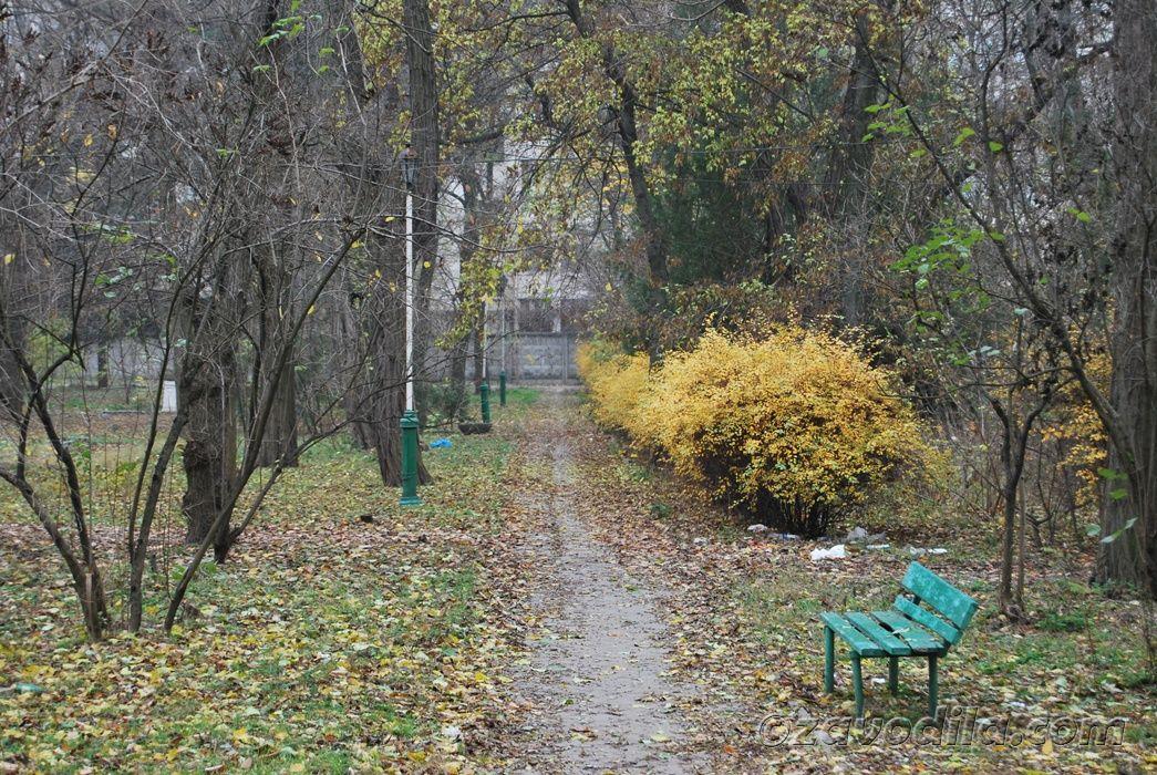 Осень – пора депрессий. Избавляемся от хандры