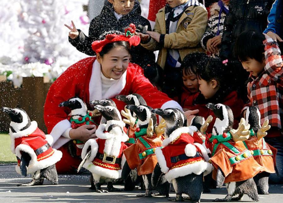 Самые необычные новогодние традиции Корея