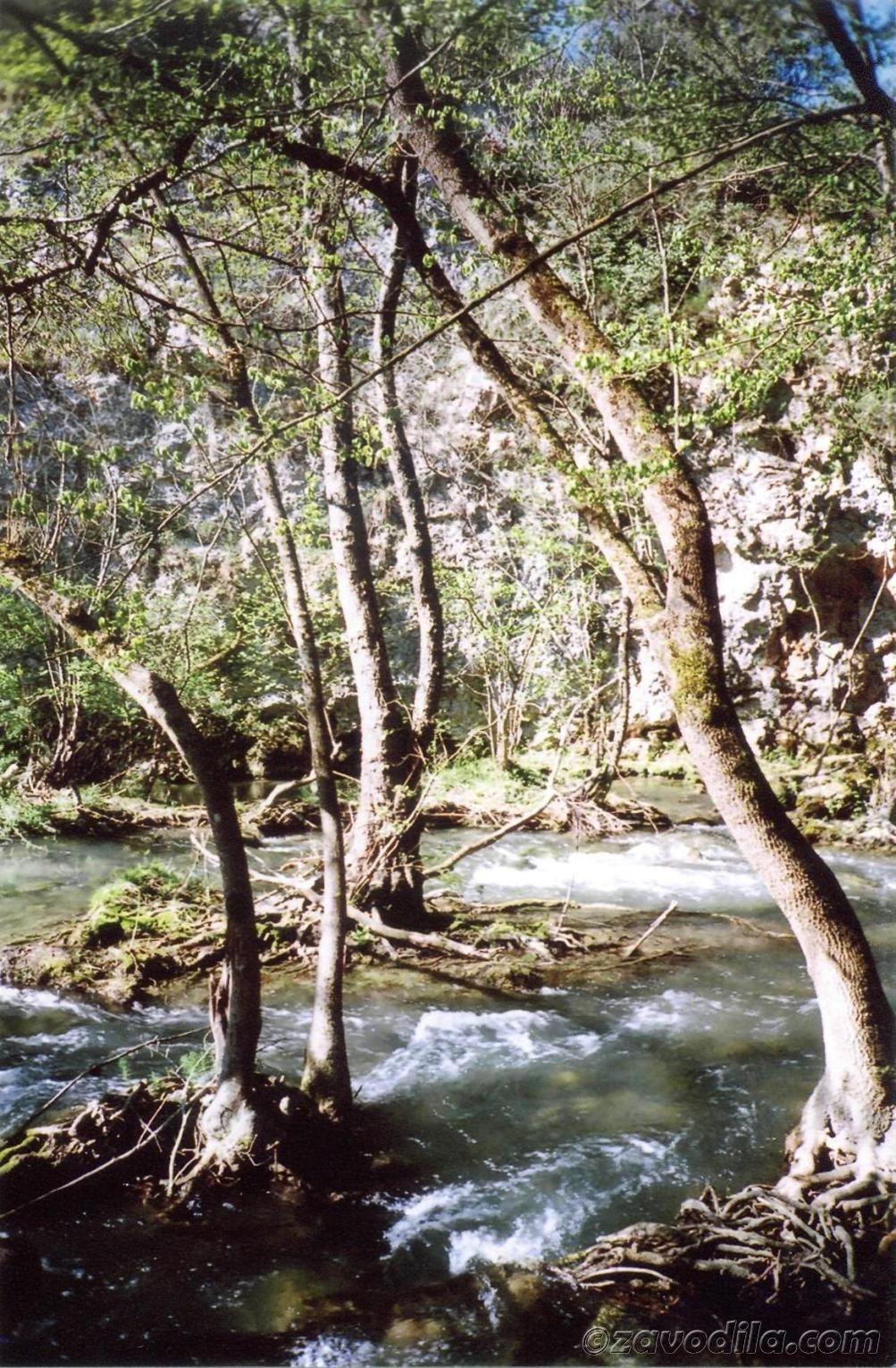 Турпоход на Чернореченский каньон в Крыму, фото