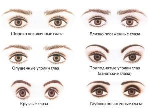 особенности глаз