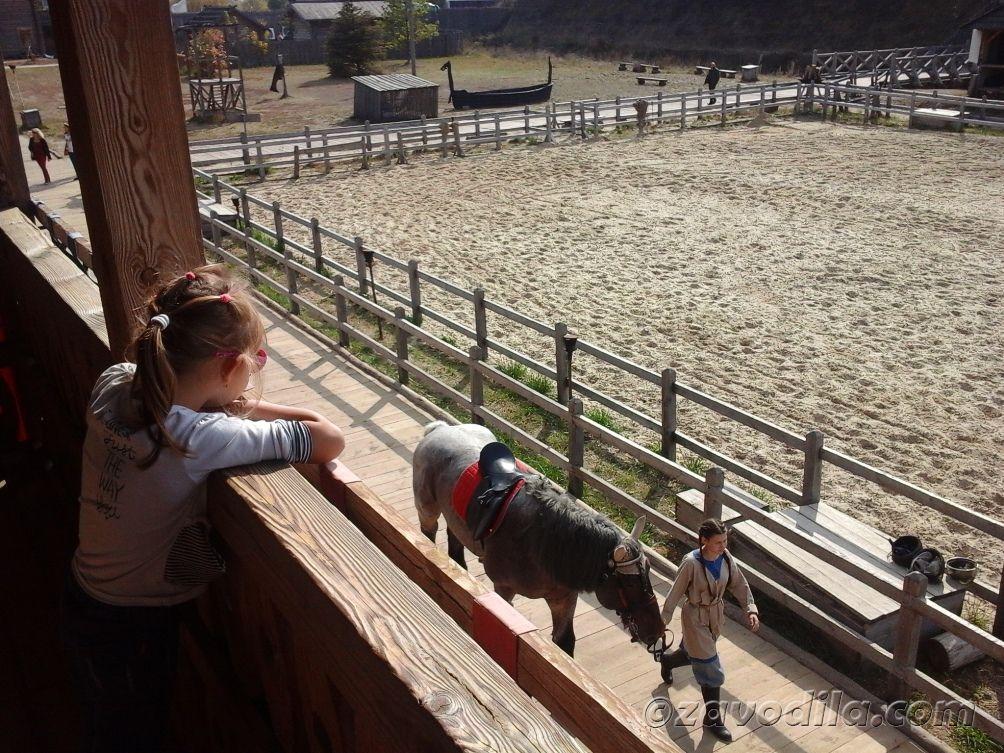 трибуна, ристалище, лошадь, наездник