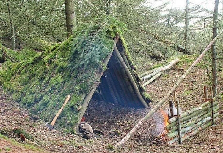 шалаш своими руками в лесу